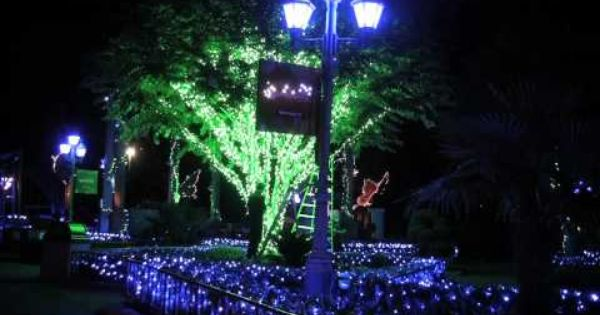 2195e4caefc659117a3c53ec6edde932 - Busch Gardens Williamsburg Howl O Scream Map