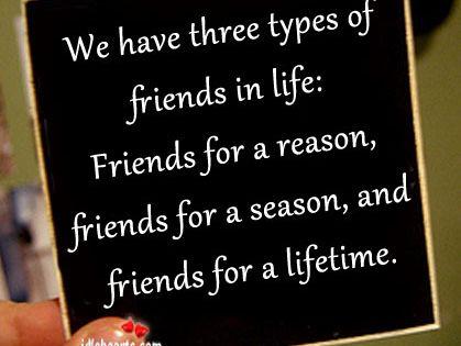 Picture of friends reason, season, lifetime -