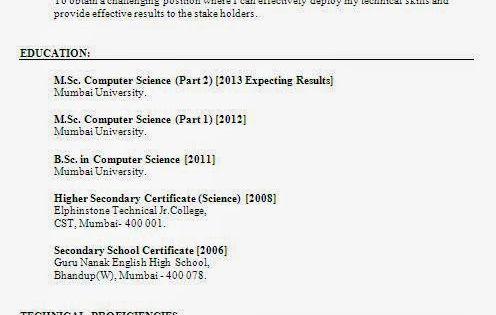 curriculum vitae download Sample Template Example of Excellent - pump repair sample resume