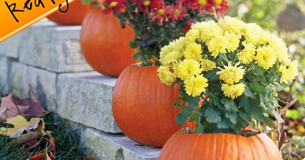 Click through for more great fall ideas and pins!