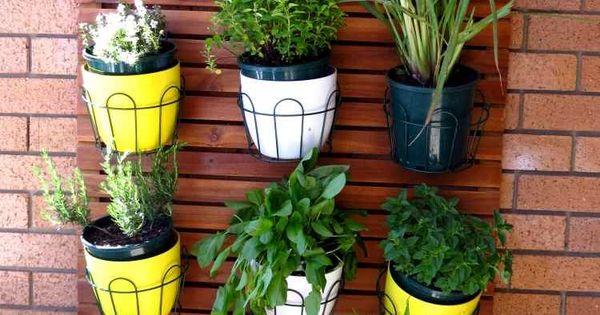 Plantes balcon de belles id es pour d corer notre for Plante exterieur balcon