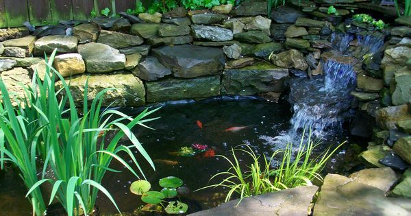 Koi pond or goldfish pond goldfish pond pinterest for Koi pond volume calculator