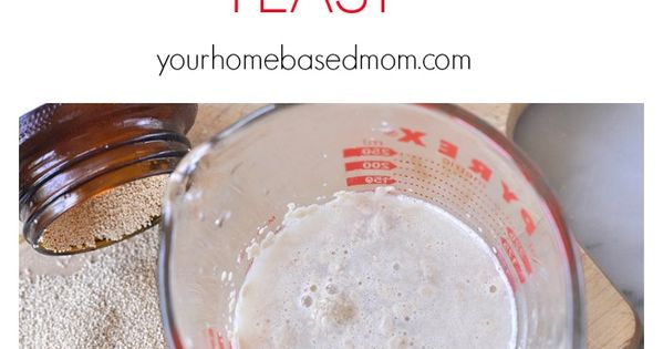 How to Work with Yeast   How to work, Bread recipes and ...
