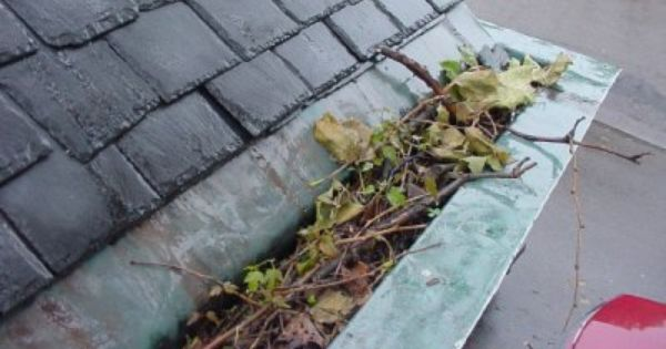Do Your Gutters Look Like This Clogged Gutters Do Not