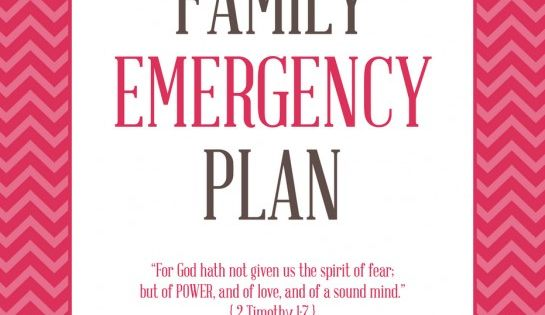 FREE PRINTABLES to create a Family Emergency Plan Binder ...