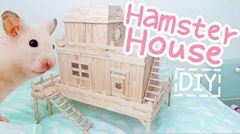 Diy Hamster Youtube Hamster Diy Diy Hamster House Hamster House