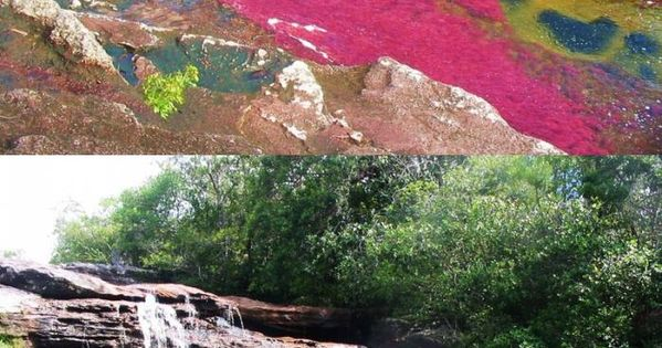 Seven Colors River, Colombia Cano Cristales