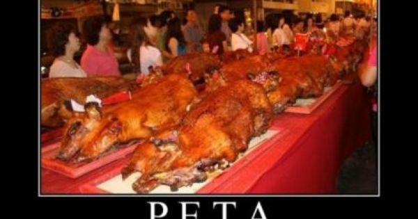 People Eating Tasty Animals | ANIMAL RIGHTS | Pinterest ...