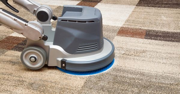 59 95 Whole House Carpet Cleaners Carpet Cleaning Service How To Clean Carpet Cleaning Upholstery