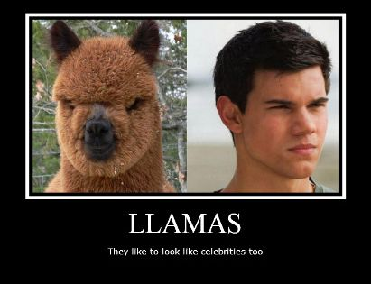 I love me some Taylor Lautner, but this is funny.