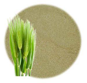 Barley Grass Powder Barley Grass Facial Toner Recipe Aging Skin Care