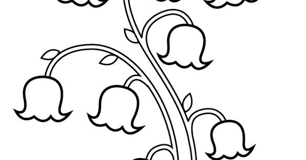 lily of the valley flower drawings lily of the valley