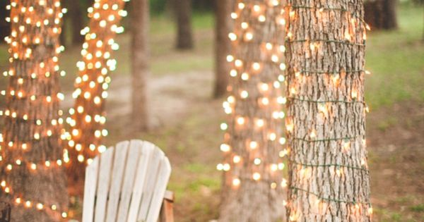 Trees Wrapped In Twinkle Lights At A Wedding And I Like The Tinkle Lights In Mason Jars That Are