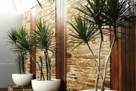 Como decorar con plantas decoracion de interiores - Como limpiar una casa rapido ...