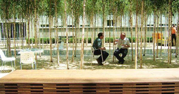 Courtyard novartis headquarters forum 1 courtyard pwp for Courtyard landscaping ottawa