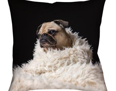 Latitude Run Karlos Pug In Blanket Pillow Cover With Zipper Square Pillow Cover Square Floor Pillows Euro Pillow