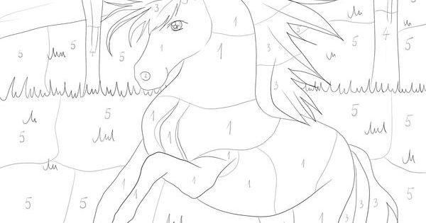 pferd  malen nach zahlen  malen nach zahlen  pinterest
