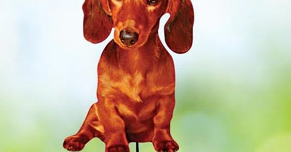 Dachshund Best Friend Yard Stake Dachshund Best Friends Crusoe
