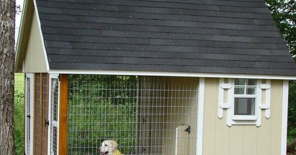 What a great dog house! They have a choice of inside or