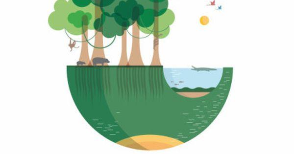 circled landscapes illustrations