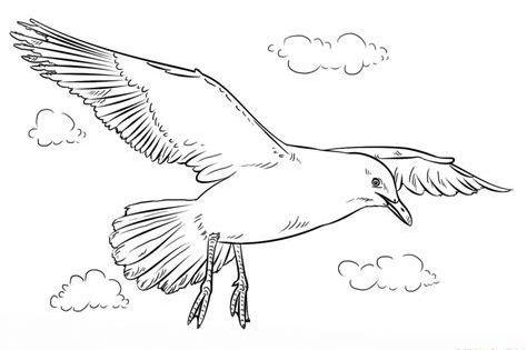 How To Draw A Seagull Step By Step Drawing Tutorials For Kids And Beginners Malen Und Zeichnen Vogel Zeichnen Tiere Zeichnen