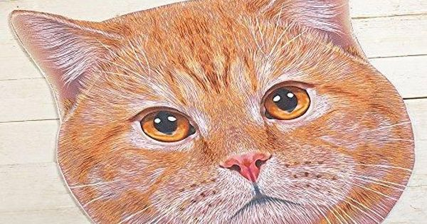Orange Head Kitty Cat Face Door Mat Cat Face Cats Cat Gifts