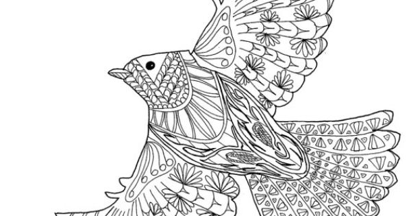 Eagle Amazing Animals Adult Coloring