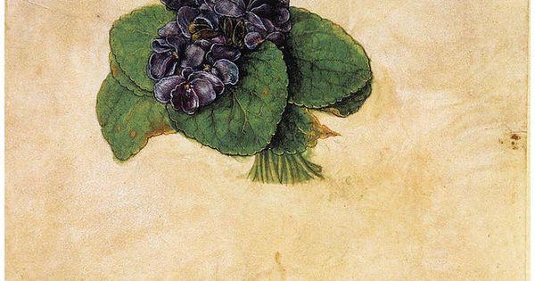 Acheter tableau 39 violette bouquet 39 de albrecht durer achat d 39 un - Acheter une peinture sur toile ...