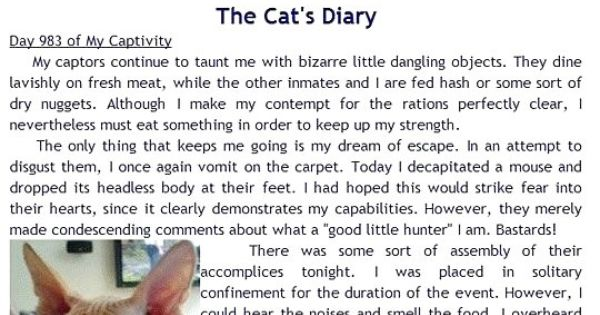 Dear Diary Cat Vs Dog