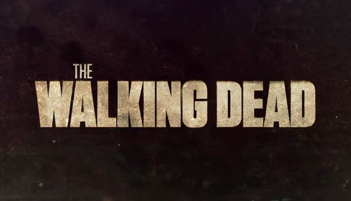 Walking Dead Poster Most watched Series Flesh-eating Zombies Never Been Hung