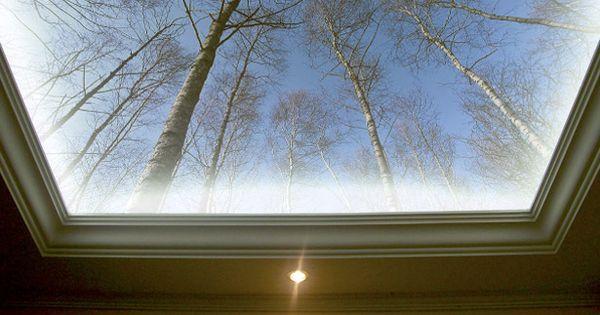 Voorbeeld fotobehang plafond met led verlichting sky ceiling art pinterest plafond - Deco toiletten natuur ...