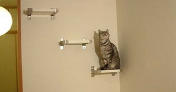 Modern cat tree with ikea shelving cat tree ideas pinterest trees cats and shelving - Modern cat tree ikea ...