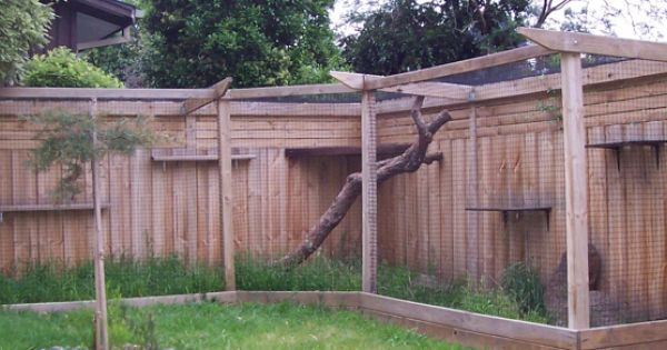 outdoor cat enclosure integrated into fence... if we ever ...