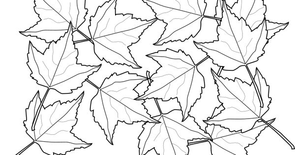 Printable Coloring Fall Tree Leaf Natural World Autumn