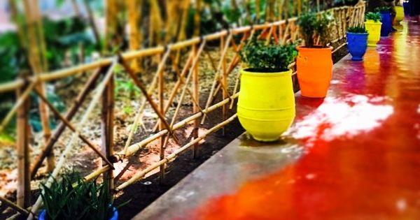 Pause d tente et d couverte au jardin majorelle for Jardinage decoration jardin