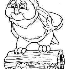 Owl 1 Coloring Page Disney Coloring Pages Bambi Coloring Pages Owl Coloring Pages Horse Coloring Pages Disney Coloring Pages
