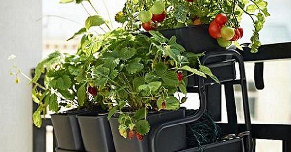 Socker ikea colgador balc n plantas macetas proyecto - Jardin vertical interior ikea rouen ...
