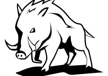 Jabali Arte De Silueta Dibujos Tribales Dibujo De Ciervos