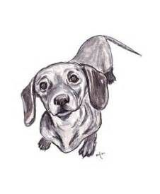 Portrait Of A Mini Dachshund Drawing Dachshund Drawing