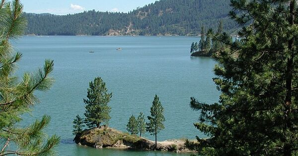 Dworshak reservoir orofino idaho i don 39 t know if we for Dworshak reservoir fishing
