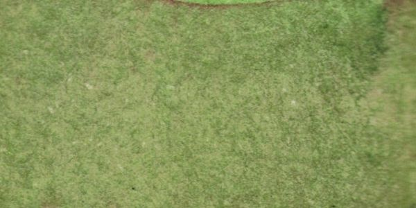 Textures 132 By Inthename Stock On Deviantart Grass Textures