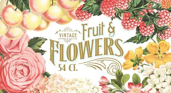 MASSIVE Vintage Fruit and Flowers by Eclectic Anthology
