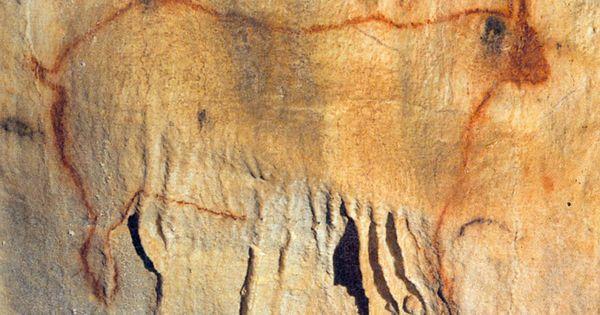 Cro Magnon Man Cave Art : Cave paintings at cougnac payrignac france