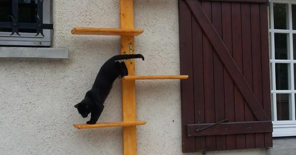 how to build cat stairs