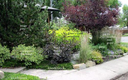 Calgary garden coach garden design for sustainable and for Garden design zone 3