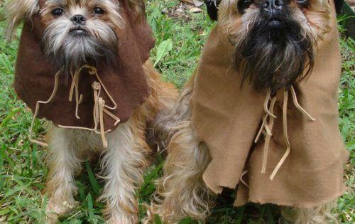 hehehehe I want StarWars puppies!