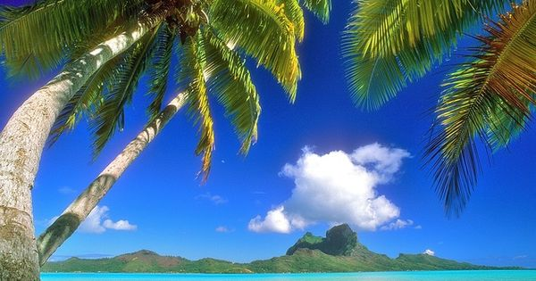 "@kevintliess longs for Bora Bora: ""I wish I were chilling at the"