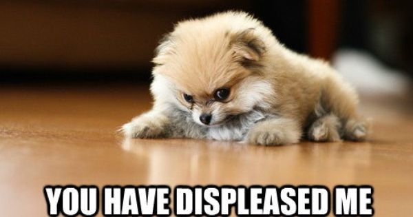 You Have Displeased Me Sobaki