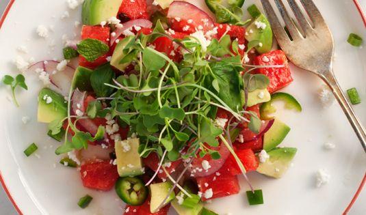 Watermelon recipes, Watermelon and Avocado salads on Pinterest