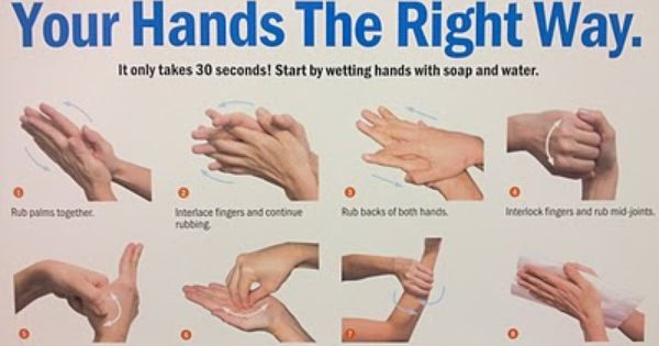 The Right Way To Wash Your Hands Wash Your Hands Wash Hands
